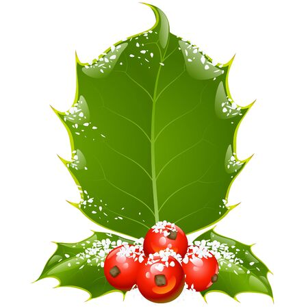 Christmas and New Year background. Vector holly frame isolated on white Vector