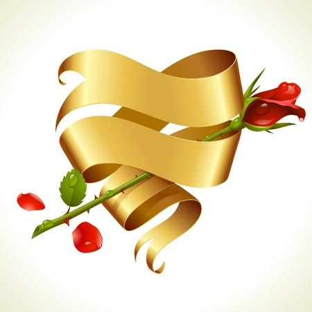Ribbon banner in the shape of heart and red rose. Valentines Day Card Vector