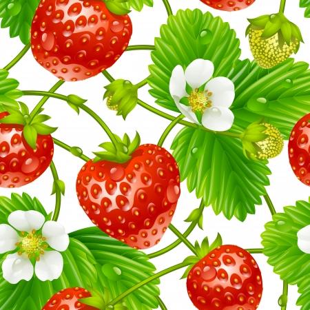 흰색 배경에 고립 된 벡터 딸기 원활한 패턴 일러스트