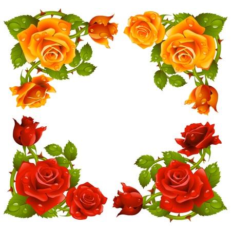 cenefas flores: Vector esquina aisladas sobre fondo blanco se levantó. Flores rojas y amarillas.