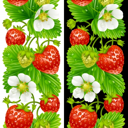 Vector strawberry seamless vertical pattern isolated on background Vector