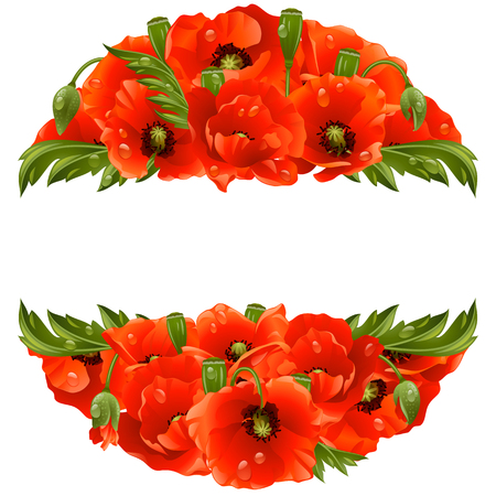 poppies: Vector circle frame with red poppies isolated on white background Illustration