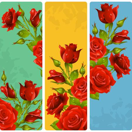 Red Rose frames. Vector set of floral vertical banners Illustration