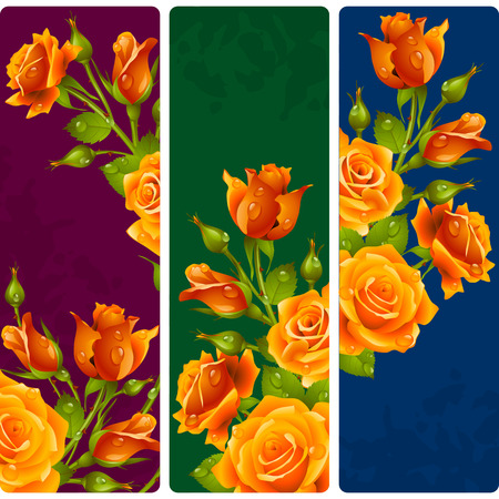 yellow rose: Yellow Rose frames. Vector set of floral vertical banners