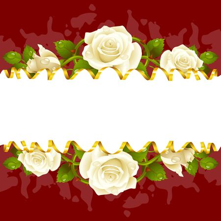 golden frame: Vector horizontal frame whith white roses and golden ribbon
