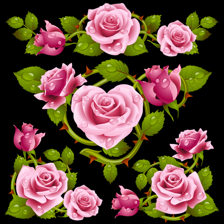 flower heart: Vector pink Rose design elements isolated on black background