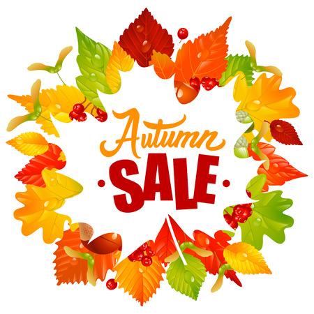 Cadre avec feuilles d'automne, châtaigne, acorn et Ashberry. Lettrage du texte de vente d'automne. Season Discount Banner Isolated