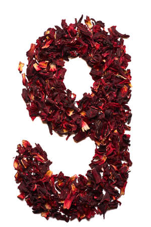 Number 9 from dried flowers of hibiscus tea on a white background. Number for banners, advertisements, menus. Foto de archivo - 104176202