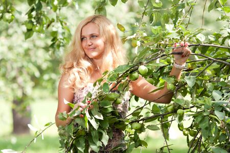 The woman holds an apple-tree branch Stock Photo
