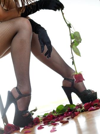 women s feet and rose Stock Photo - 18435114