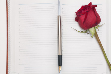 open diary: Open diary book, pen and rose on a white