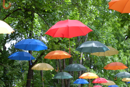 Multicolored umbrellas on a background of green trees