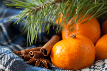 Beautiful tangerines, cinnamon and a pine branch