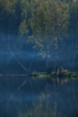 beautiful early morning on a lake in a forest 版權商用圖片