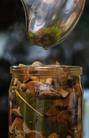 small beautiful mushrooms pickled in a jar