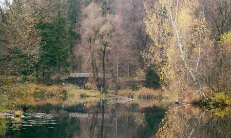 beautiful autumn forest by the lake and the old bridge