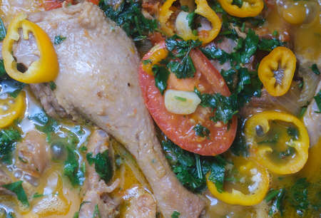 delicious duck in sauce with tomatoes, garlic and spices 版權商用圖片 - 158008685