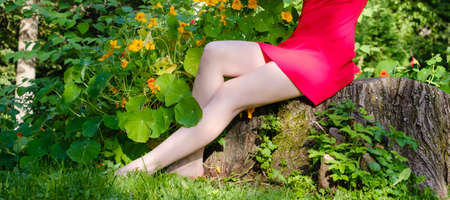 beautiful female feet in the park on the grass with a blurred green background