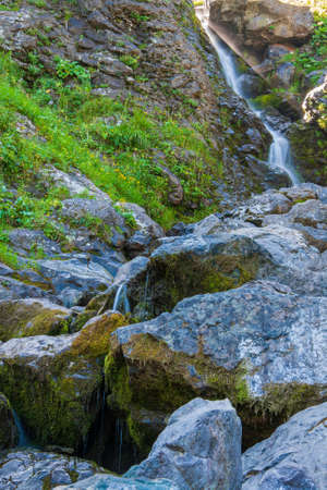 beautiful stream with stones overgrown with moss in the mountains Stock Photo