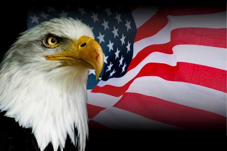 アメリカのシンボル - 黒の背景を持つワシと米国の旗。