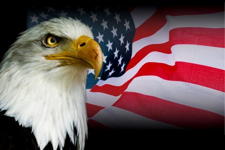 American symbol - USA flag with eagle with black background. Stock Photo