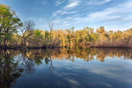 Beautiful sunset on the river in forest with sky reflection. Spring in Ukraine photo