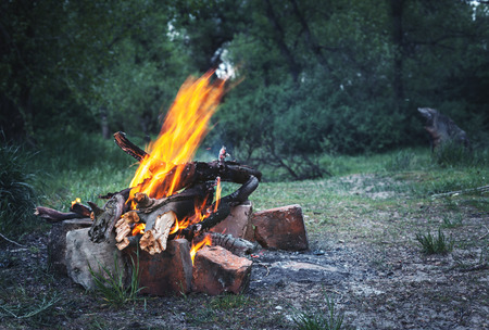 Bonfire in the spring forest. Coals of fire. Twilight in Ukraine photo