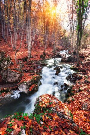 rocks water: Beautiful autumn forest with river in crimean mountains at sunset. Nature background