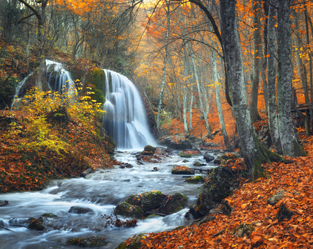 yellow trees: Beautiful waterfall at mountain river in colorful autumn forest with red and orange leaves at sunset. Nature landscape