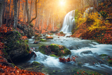 forest river: Beautiful waterfall at mountain river in colorful autumn forest with red and orange leaves at sunset. Nature landscape