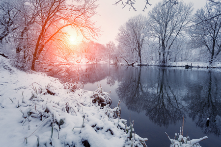 Winter forest on the river at sunset. Colorful landscape with snowy trees, frozen river with reflection in water. Seasonal. Winter trees, lake, sun and blue sky. Beautiful snowy winter in countryside Stock Photo