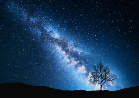 Milky Way and tree on the field. Little tree against night starry sky with blue milky way. Night landscape. Space background. Galaxy. Nature and travel background. Wilderness, wild nature 스톡 콘텐츠