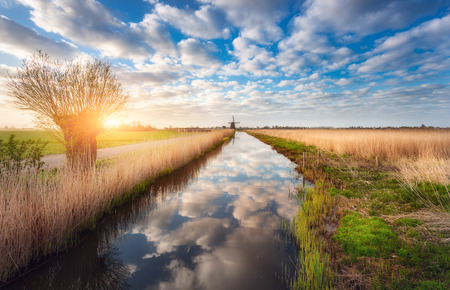 molino de agua: Fields near the water canal at sunrise in Netherlands. Tree against colorful blue sky with clouds. Spring landscape in Holland. Sunny morning. Cloudy sky reflected in water. Nature background Foto de archivo