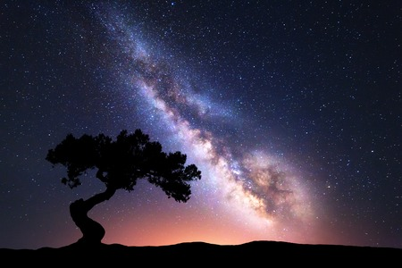 Milky Way with alone crooked tree on the hill. Colorful night landscape with bright milky way, starry sky and hills in summer. Space background. Amazing astrophotography. Beautiful universe. Travel