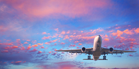 Landing airplane. Landscape with white passenger airplane is flying in the blue sky with pink clouds at sunset. Travel background. Passenger airliner. Business trip. Commercial aircraft. Private jet Stok Fotoğraf