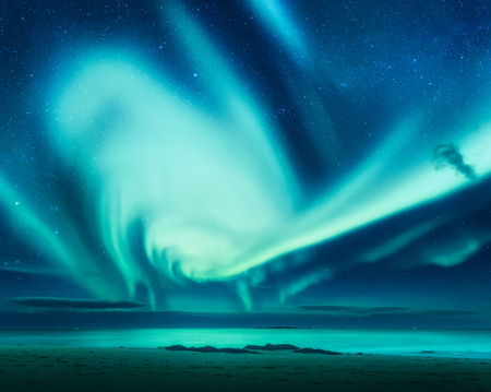 Polar lights above the sea at night in Lofoten islands, Norway. Green northern lights. Starry sky with Aurora borealis. Winter landscape with aurora, sea, sandy beach, sky reflection in water. Nature