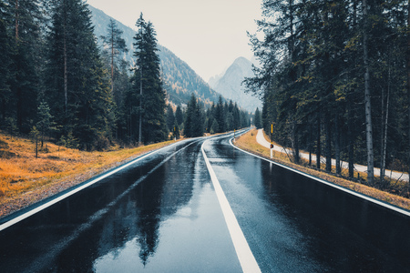 Road in the autumn forest in rain. Perfect asphalt mountain road in overcast rainy day. Roadway with reflection and pine trees in italian alps. Transportation. Empty highway in foggy woodland. Trip 写真素材 - 112624777