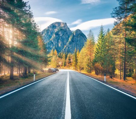 Road in green forest at sunset in summer in Italy. Beautiful mountain roadway, trees with colorful foliage, gold sunbeam. Landscape with empty asphalt road, woods, blue sky, rocks in spring. Travel