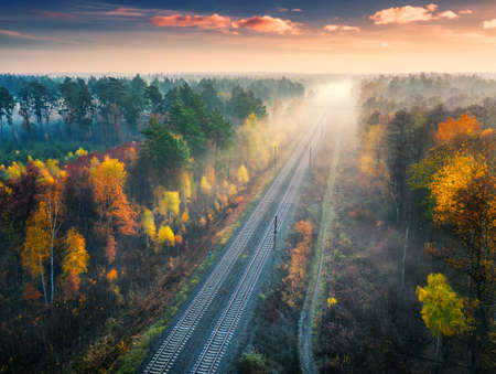 Aerial view of beautiful railroad in autumn forest in foggy sunrise. Industrial landscape with railway station, blue sky with clouds, trees with orange leaves, fog. Top view of rural railroad in fall