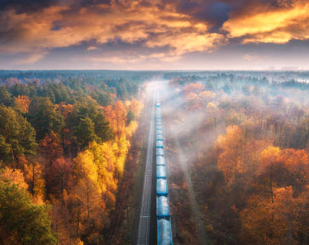Aerial view of freight train in beautiful forest in fog at sunset in autumn. Landscape with railroad, foggy trees, trail and colorful sky with clouds. Top view of moving train in fall. Railway station 免版税图像
