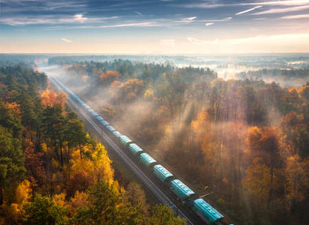 Aerial view of freight train in beautiful forest in fog at sunrise in autumn. Colorful landscape with railroad, foggy trees, sunbeams and blue sky. Top view of moving train in fall. Railway station