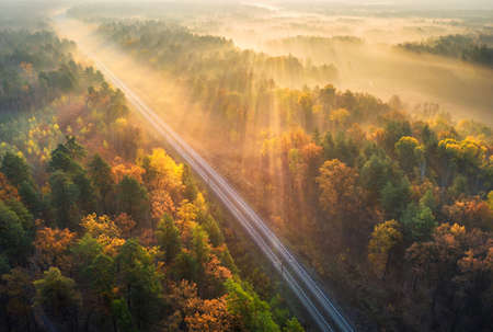 Aerial view of beautiful railroad in autumn forest in foggy sunrise. Industrial landscape with railway station, sky, trees with orange leaves, fog and sun rays. Top view of rural railroad and sunbeams