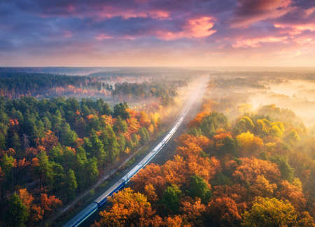 Aerial view of passenger train in beautiful forest in fog at sunset. Autumn landscape with railroad, foggy trees, trail and colorful sky with clouds. Top view of moving train in fall. Railway station 免版税图像