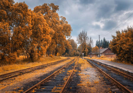 Rural railway station in autumn in cloudy day. Industrial landscape with old railway platform, orange trees, buildings, overcast sky. Railroad and beautiful forest in countryside. Railway in fall