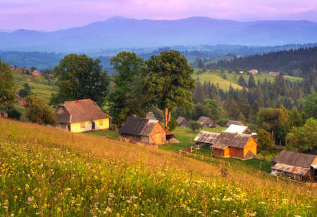 Small houses in mountain village at sunset in summer in Ukraine. Traditional ukrainian houses in mountain valley. Rural Landscape with buildings, flowers, green grass, trees on the hill, purple sky