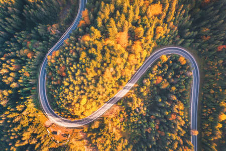 Aerial view of mountain road in beautiful forest at sunset in autumn. Top view from drone of winding road in woods. Colorful landscape with curved roadway, trees with orange leaves in fall. Travel