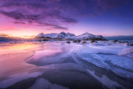 Frozen sea coast at colorful sunset in Lofoten islands, Norway. Snowy mountains, sea with frosty shore, ice, reflection in water, purple sky . Winter landscape with snow covered rocks, fjord at night 免版税图像