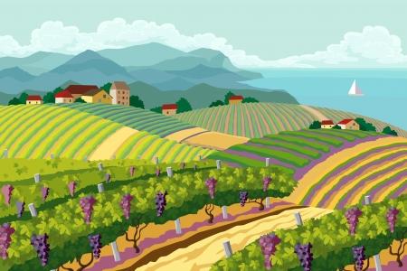 country: Landelijk landschap met wijngaarden en de bergen en de zee panoram Stock Illustratie