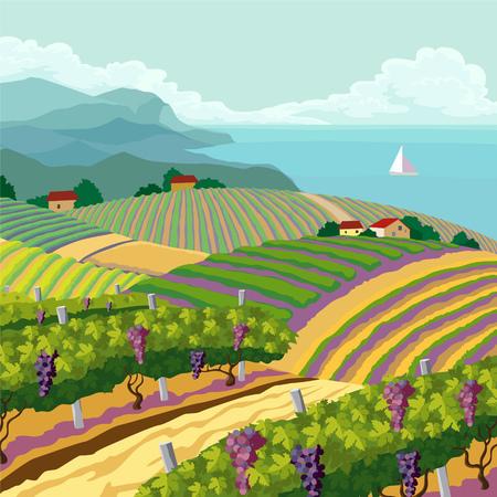 felder: L�ndliche Landschaft mit Weinberg und Berge und das Meer panoram Illustration