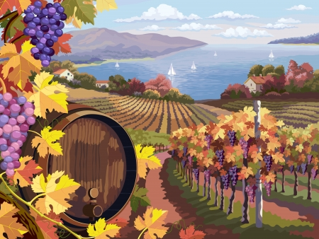 Rural landscape with vineyard and grapes bunches and wooden barrel for wine.